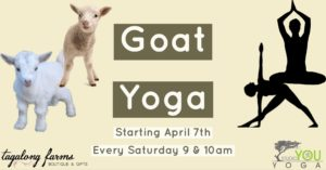 Goat Yoga @ Tagalong Farms